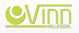Vinn AS Hallingdal