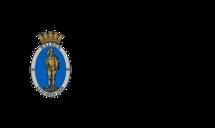 Halden kommune