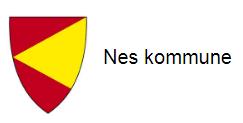 Nes kommune